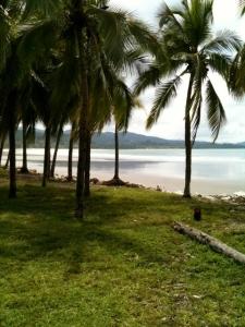 a- angelina beach 4