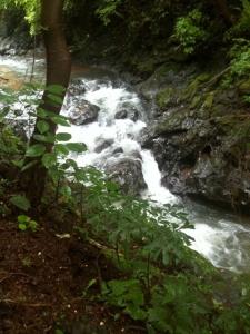 a- angelina river
