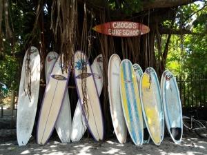 Surfing Samara