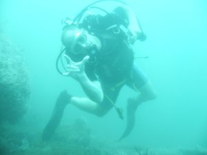 Diving/Buceando