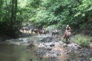 Ride horseback to a waterfall