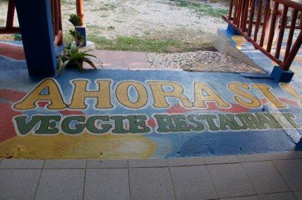restaurants in samara beach costa rica
