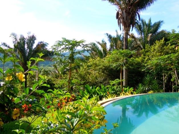 environmental education in samara costa rica